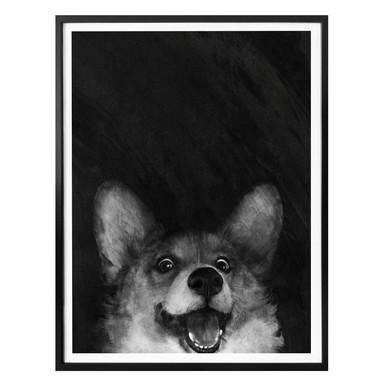 Poster Graves - Sausage Fox Corgi