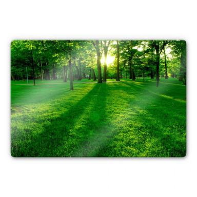 Glasbild Park im Grünen
