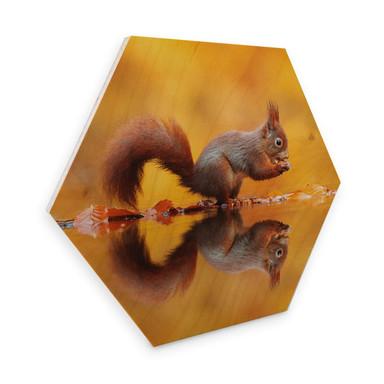 Hexagon - Holz Birke-Furnier van Duijn - Eichhörnchen mit Nuss