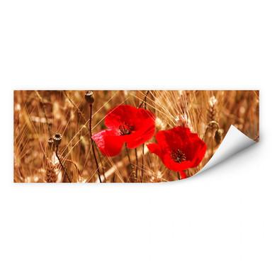 Wallprint Mohnblüten im Feld - Panorama