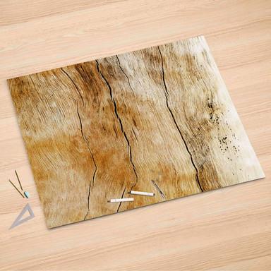 Folienbogen (150x100cm) - Unterholz