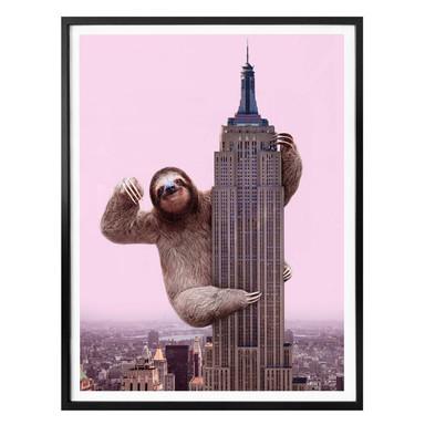 Poster Fuentes - King Sloth