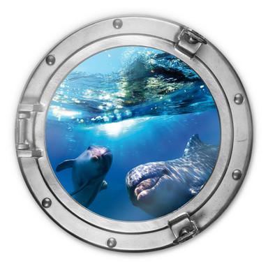 Glasbild 3D Optik Dolphins Underwater - rund