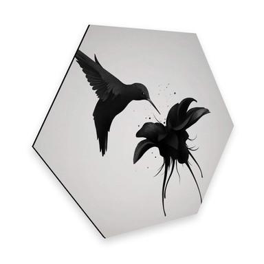 Hexagon - Alu-Dibond Ireland - Chorum - Kolibri