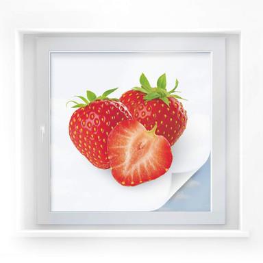 Sichtschutzfolie Strawberries - quadratisch