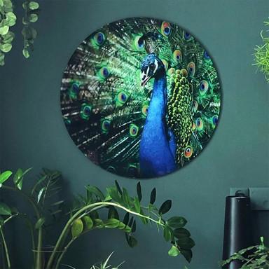 Glasbild Beautiful Peacock - rund