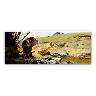 Hartschaumbild Kuhnert - Ein Löwe und eine Löwin an einem Bach