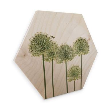 Hexagon - Holz Birke-Furnier Kadam - Zierlauch