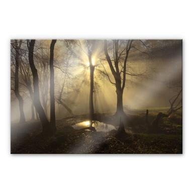 Acrylglasbild Cuadrado - Light