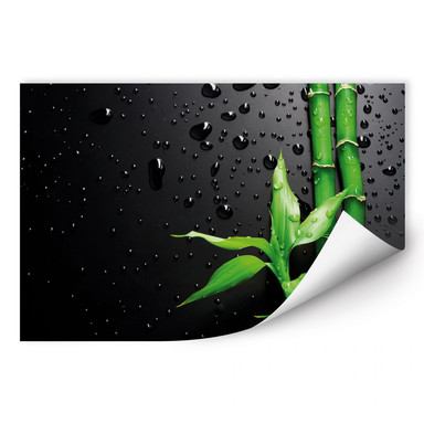 Wallprint Bamboo Over Black