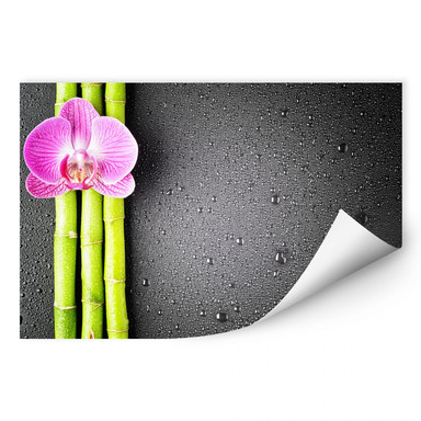 Wallprint Orchid and Bamboo