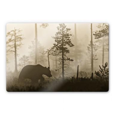 Glasbild Ove Linde - Nebel am Morgen