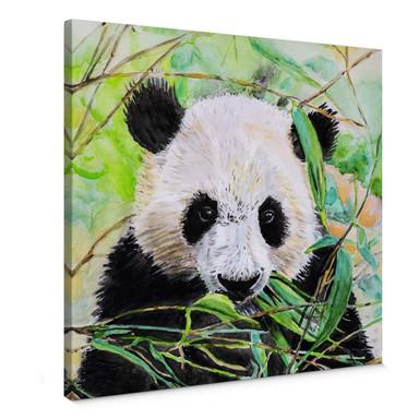 Leinwandbild Toetzke - Pandabär - quadratisch