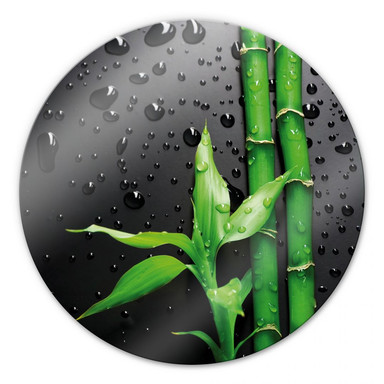 Glasbild Bamboo Over Black - rund