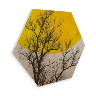 Hexagon - Holz Birke-Furnier - Kubistika - Herbst-Erinnerungen