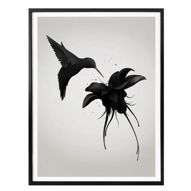 Poster Ireland - Chorum - Kolibri