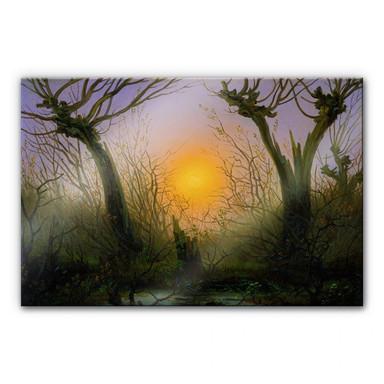 Acrylglasbild Friedrich - Waldlandschaft bei tiefstehender Sonne