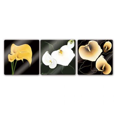 Glasbild Calla-Lilie (3-teilig)
