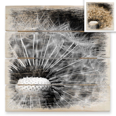 Holzbild Dandelion