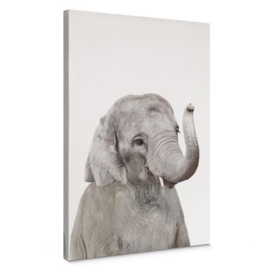 Leinwandbild Sisi & Seb - Baby Elefant
