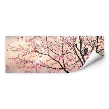 Wallprint Coleman - Primavera - Panorama
