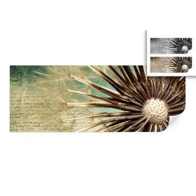 Wallprint Pusteblumen-Poesie - Panorama