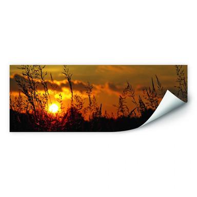 Wallprint Sonnenuntergang