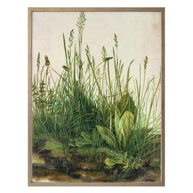 Poster Dürer - Das grosse Rasenstück