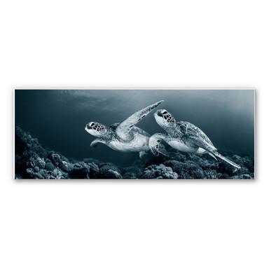 Wandbild Narchuk - Zwei Schildkröten auf Reisen