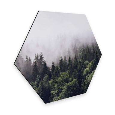 Hexagon - Alu-Dibond Nebliger Wald