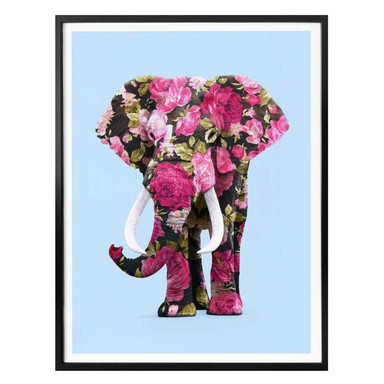 Poster Fuentes - Floral Elephant