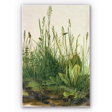 Wandbild Dürer - Das grosse Rasenstück