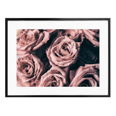 Poster Rosa Rosen im Vintagestil