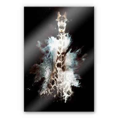 Acrylglasbild Hugonnard - Wild Explosion: Giraffe