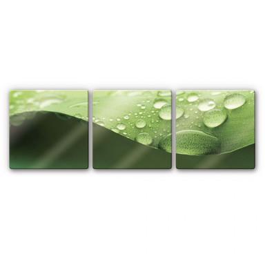 Glasbild Natur 3 (3-teilig) - Bild 1
