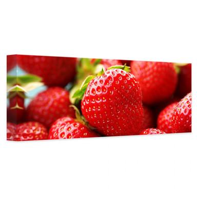 Leinwandbild Erdbeeren aus dem Garten - Panorama