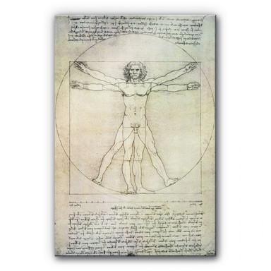 Acrylglasbild Da Vinci - Proportionszeichnung