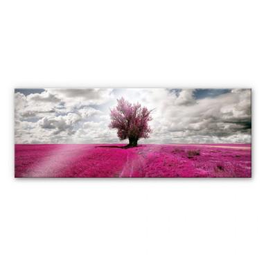 Acrylglasbild The Lonely Tree - Panorama