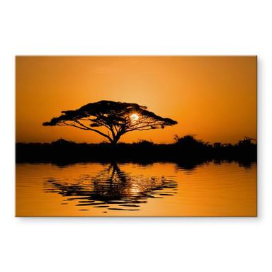 Acrylglasbild Afrika