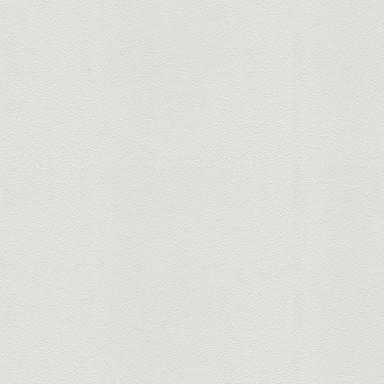 Mustertapeten A.S. Création überstreichbare Vliestapete Meistervlies 4 Protect GO Weiss, überstreichbar