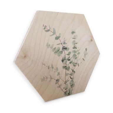 Hexagon - Holz Birke-Furnier Sisi & Seb - Eukalyptuszweig