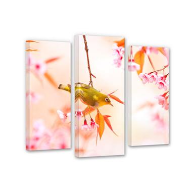 Leinwandbild Vogelgezwitscher in der Kirschblüte (3-teilig)