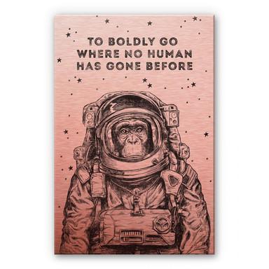 Alu-Dibond-Kupfereffekt - To Boldly go where no human has gone before