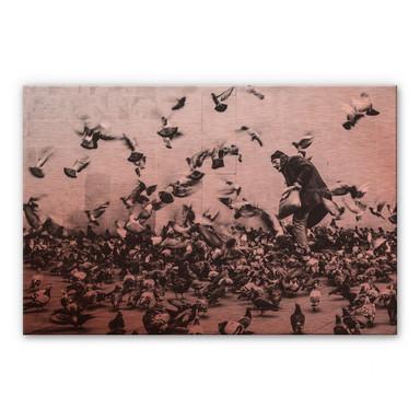Alu-Dibond-Kupereffekt - Tauben füttern