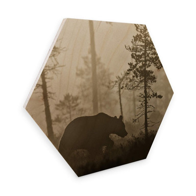 Hexagon - Holz Birke-Furnier - Ove Linde - Nebel am Morgen