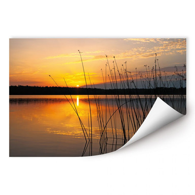 Wallprint Sonnenuntergang am See