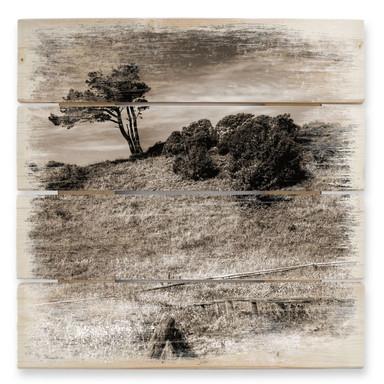Holzbild Landschaft auf Hiddensee