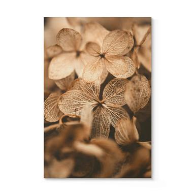 Holzposter Annie - Zarte Blüten