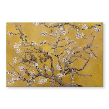 Glasbild van Gogh - Mandelblüte Ocker