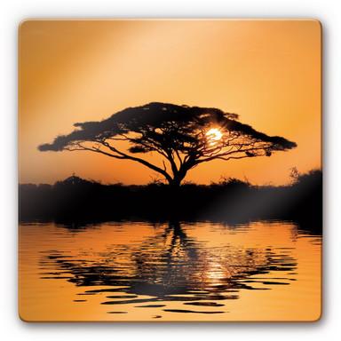 Glasbild Africa
